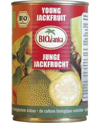 FRUIT JACQUIER